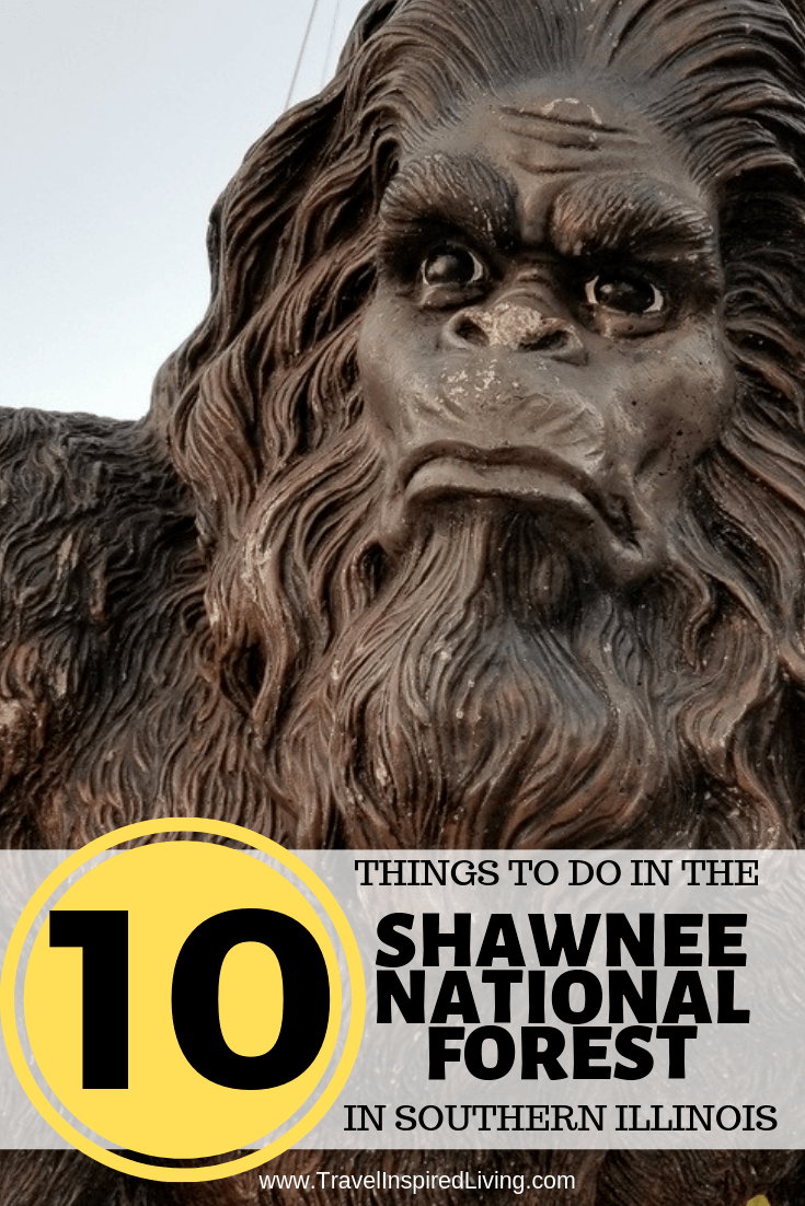 10 things to do and see in the Shawnee National Forest that May include Bigfoot