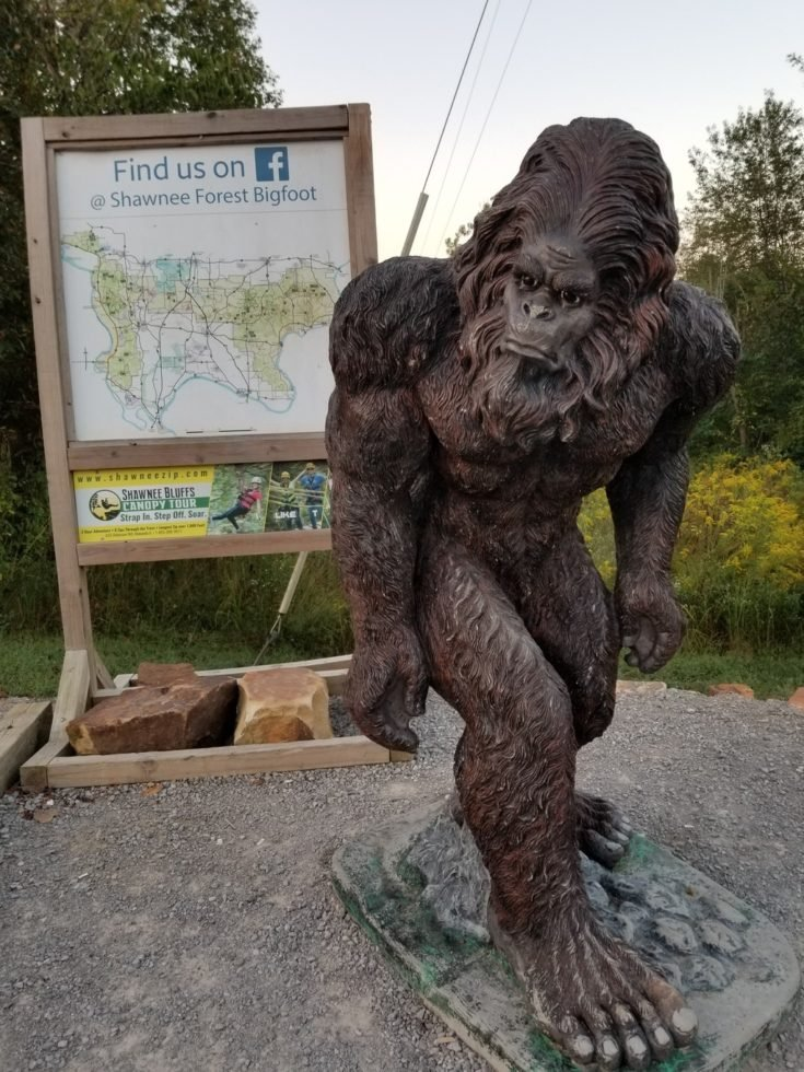 Has bigfoot been found in the Shawnee National Forest?