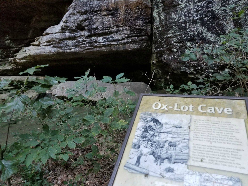 Ox Lot Cave at Shawnee National Forest