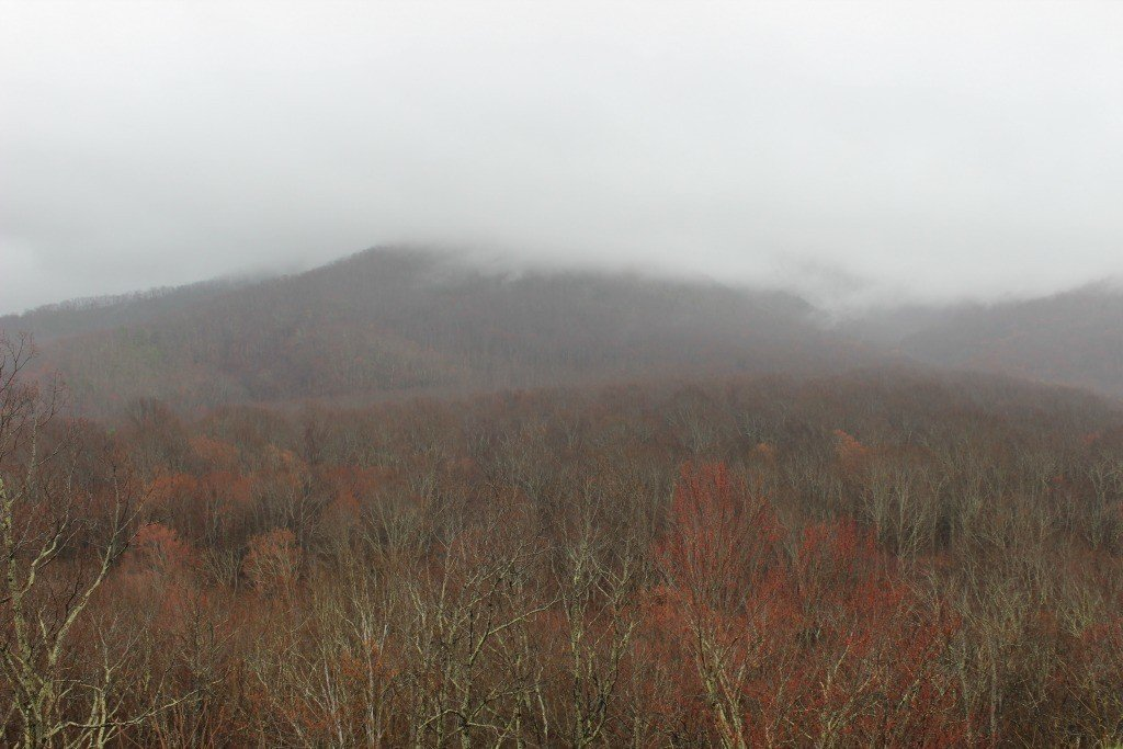 Smokies in the Fall