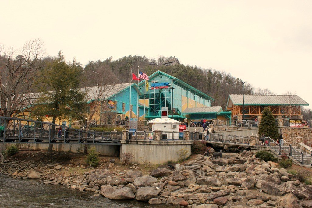 The Ripley's Attractions in Gatlinburg are must see's for anyone with kids.