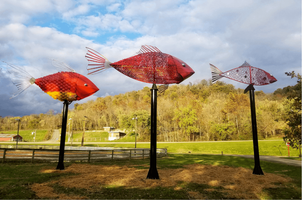 The Beautiful School of Fish that are part of the new art trail in Ohio.