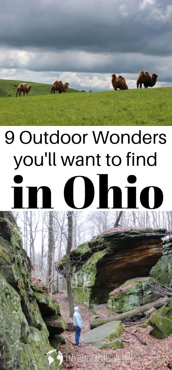9 of the best things to do in Ohio from safari's to petroglyphs these are totally unexpected.