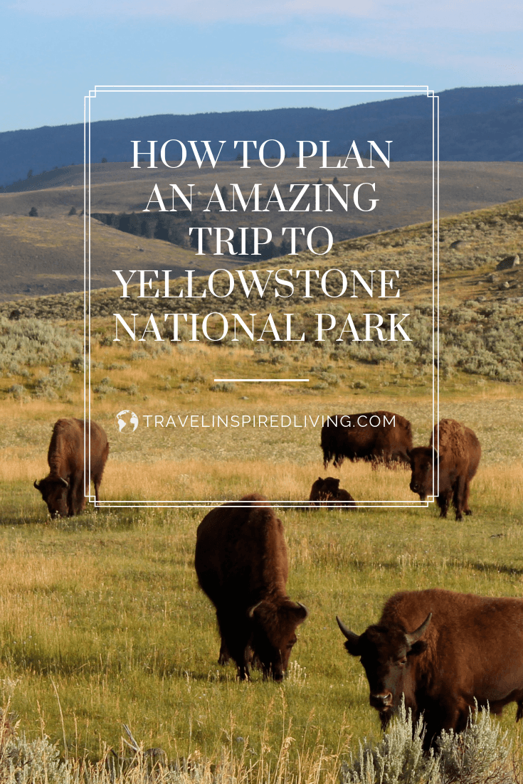 Are you planning a trip to Yellowstone National Park? We're sharing tips and ideas to help your trip be fun and memorable.