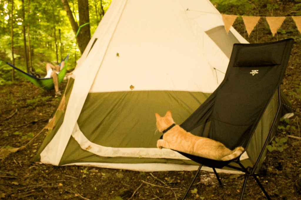 Relaxing by our tent in the woods.