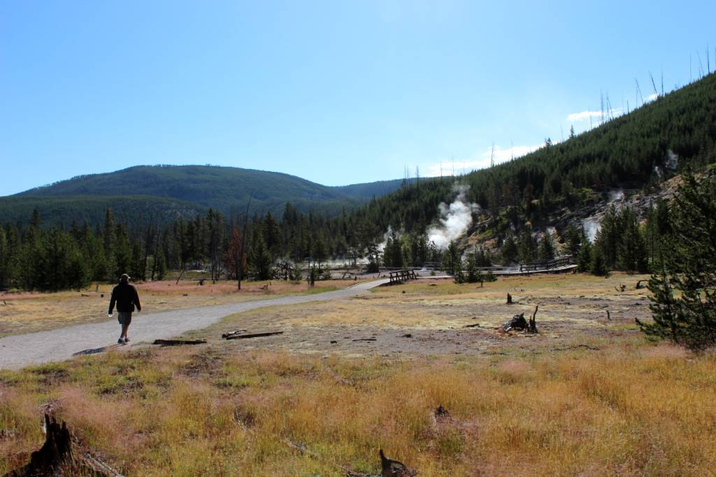 taking-walk-yellowstone