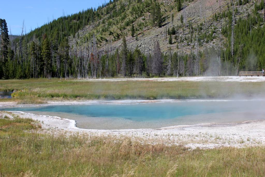 geothermal pools in Yellowstone