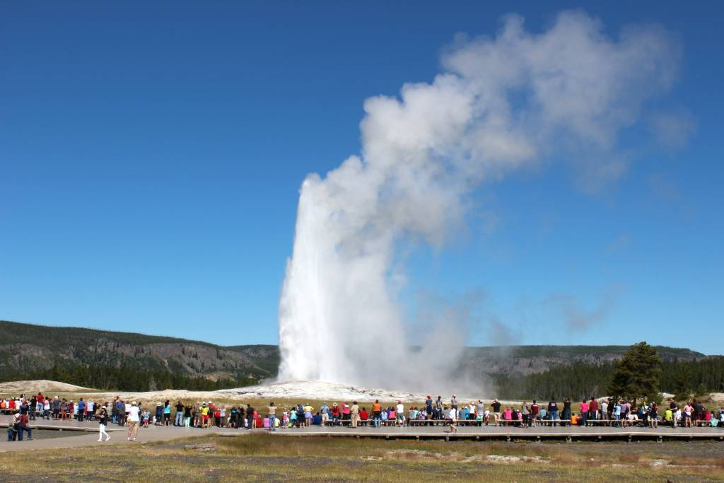Watching the Old Faithful erupt is a highlight when visiting Yellowstone.