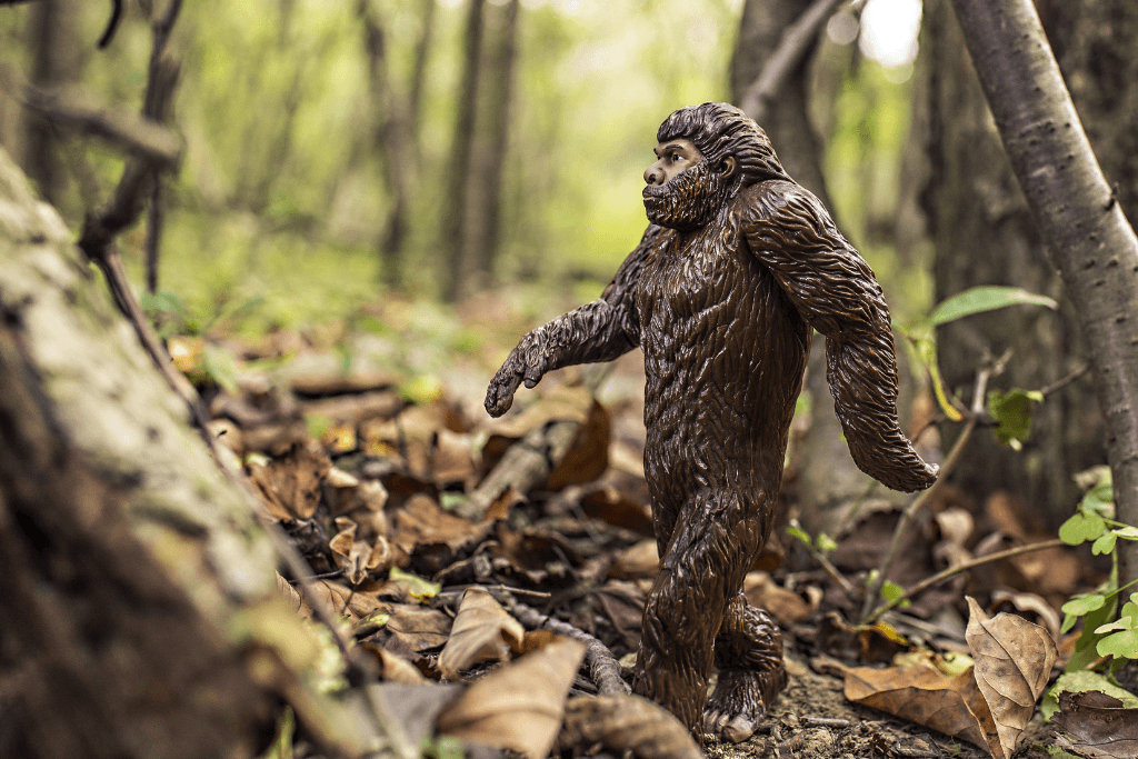Bigfoot in the woods.