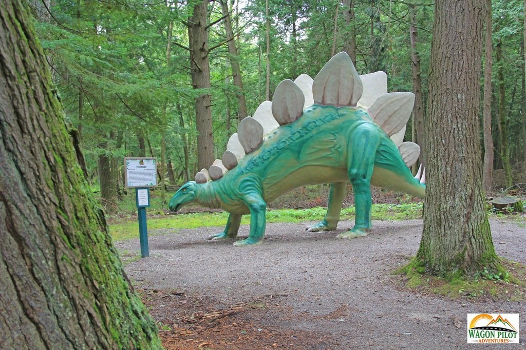 Giant Green Stegosaurus Dinosaur in Wooded Area.