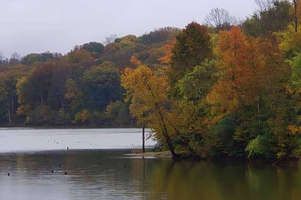The lake at Salt Fork State Park is adorned in fall colors.