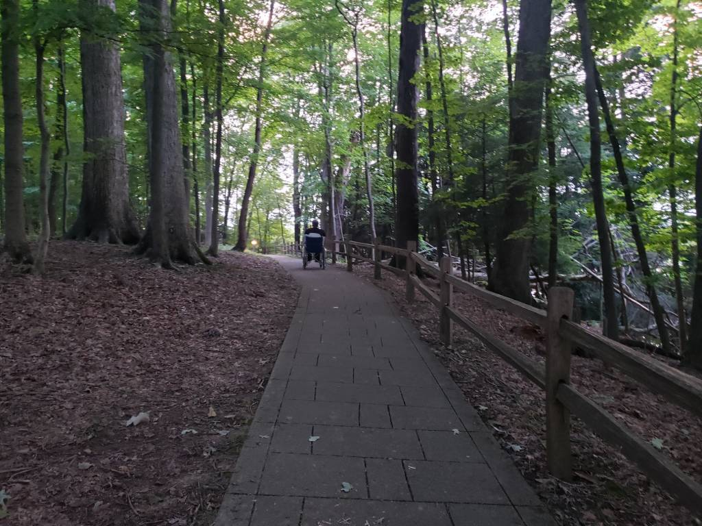 Man on a paved path through the woods in a wheelchair.