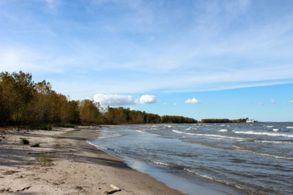 A beach with trees dressed in fall colors on one side and a beautiful blue Lake Erie on the other.