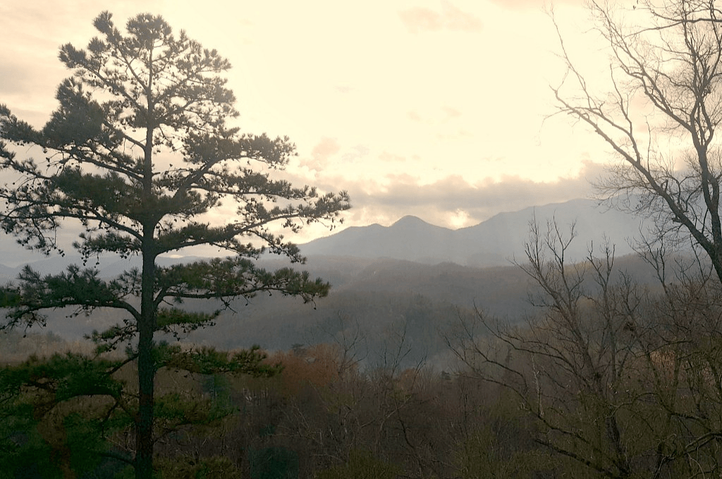 mist rising from the mountains