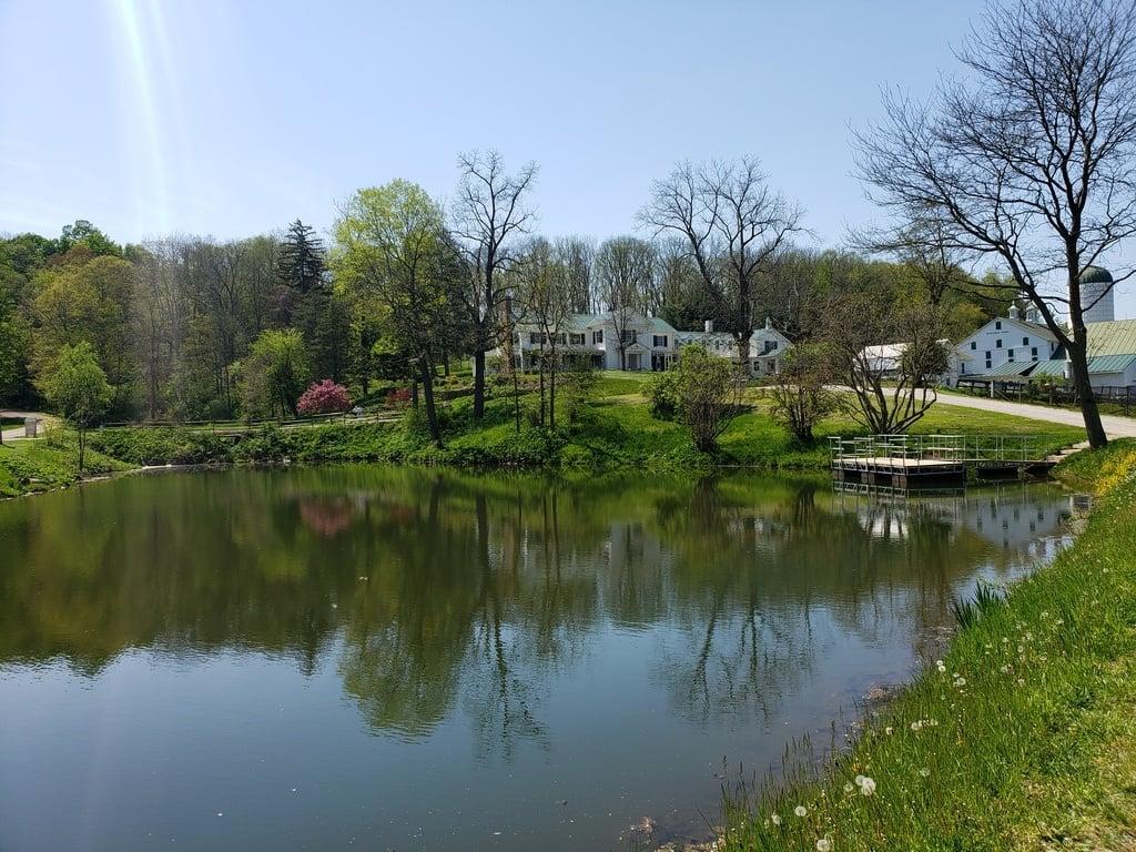 A beautiful farm setting behind a lake.