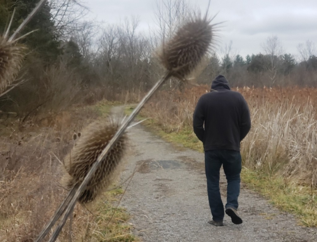 A man walking on a prairie trail.
