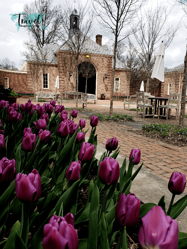 Tulips in front of a beautiful brick carraige house.