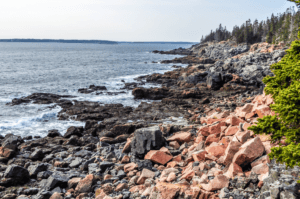 The shoreline in Acadia national park