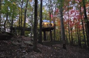 treehouse surrounded by the autumn leaves