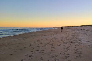 Plan your Outer Banks Vacation NC and you could be walking on this beach too.