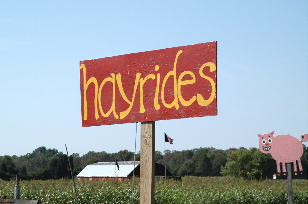 A red sign with yellow lettering spells out the word hayrides. In the background you see a field and barn structure with a pink wooden cartoon looking pig.