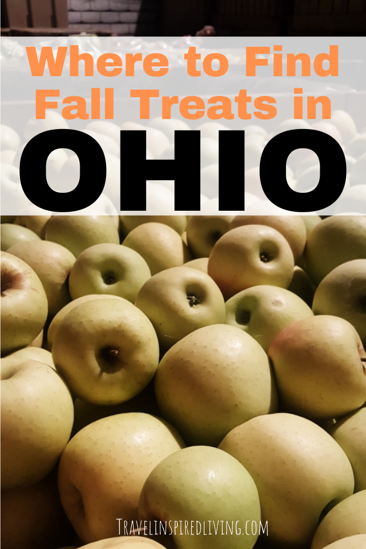 A freshly picked bin of Golden Delicious apples, one of our favorite fall treats in Ohio.